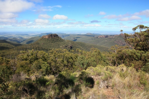 Barely known, Mount Kaputar National Park sits in the NSW hinterland near Narrabri