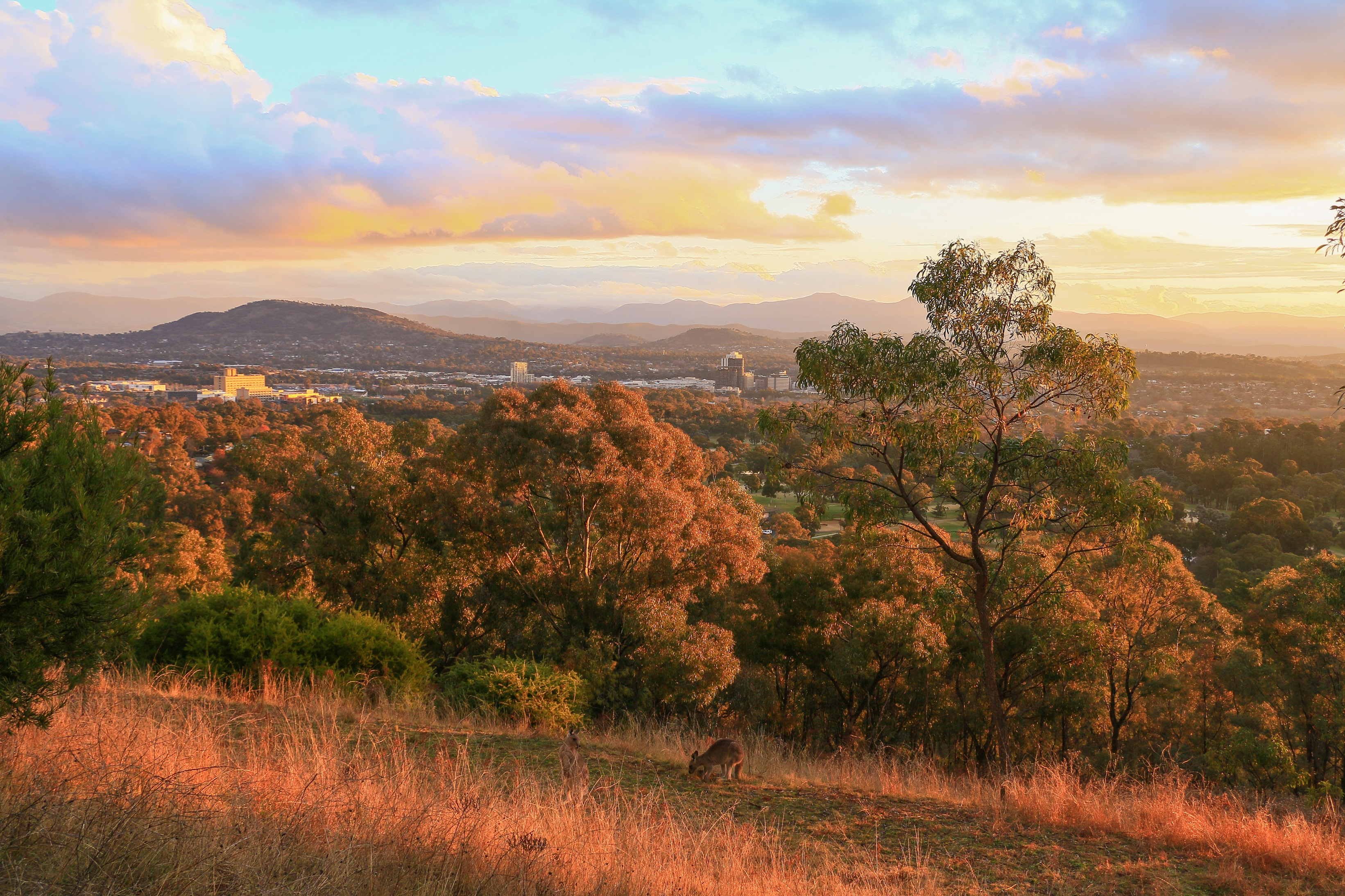 A sunset scene over Woden and the hills