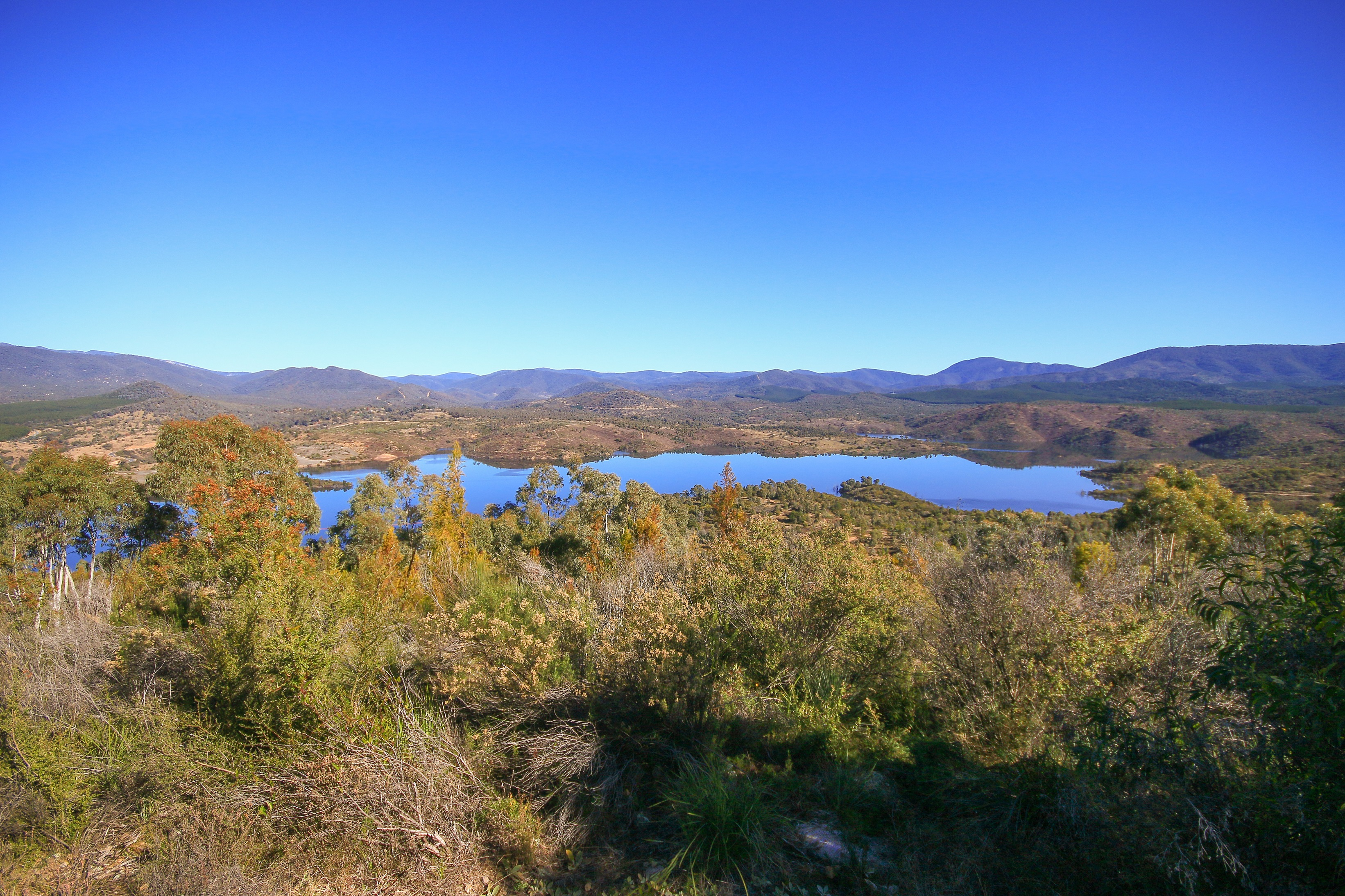 A large reservoir surrounded by forest and hills